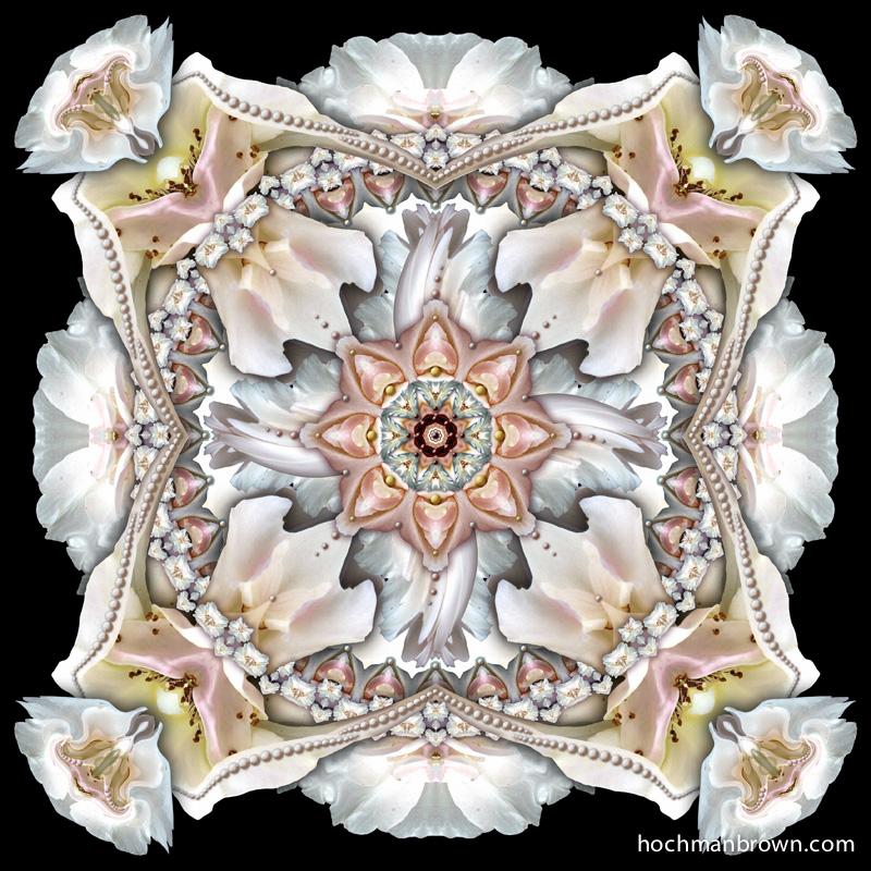 Rose Frills in Four