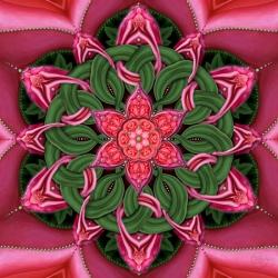Rose Entanglement