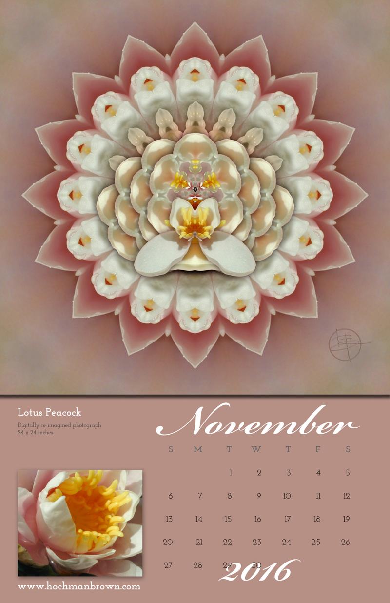 This is a calendar image of Karen Hochman Brown's Lotus Peacock for November 2016