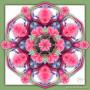 Bromilliad_artwork