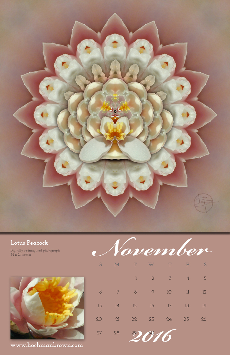 This is a calendar image of Karen Hochman Brown's Lotus Peacock for November 2016